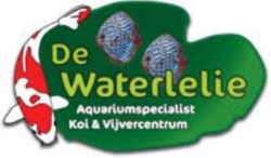 Logo de waterlelie