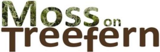Logo mos en treefern